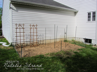 rabbit-proof fencing installed