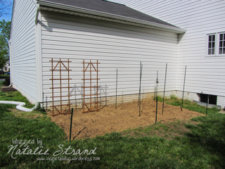 planting spots marked, trellises and stakes in place