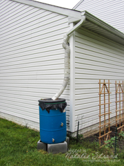 rain barrel set up