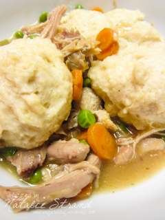 America S Test Kitchen Chicken And Dumplings