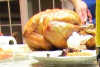 2013_11_28_turkey