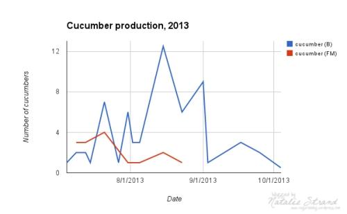 cucumbers2013