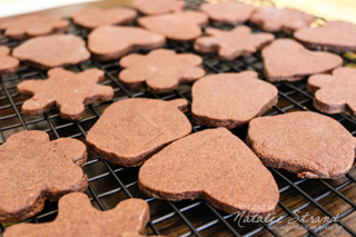SK Brownie Roll-out Cookies