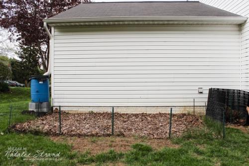 garden before tilling/planting