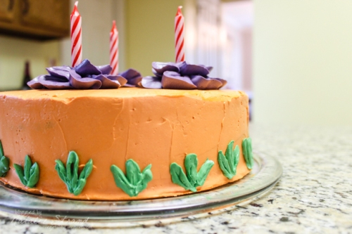2014_11_30_birthdaycake06-Edit