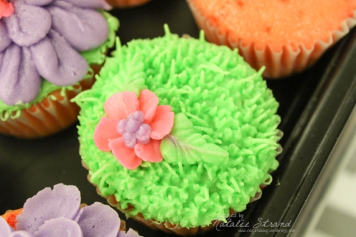 2015_05_18_cupcakesweekthree02-Edit