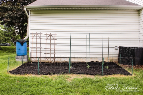 Garden planted and mulched!