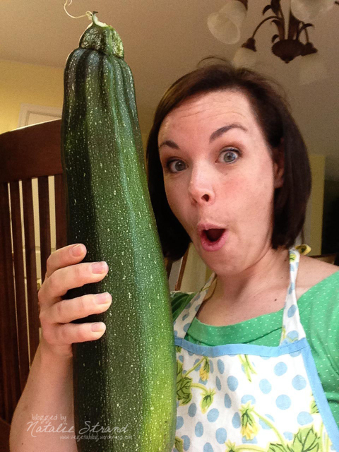 This monstrous zucchini (4 lbs, 5.5 oz) was hiding in our garden!