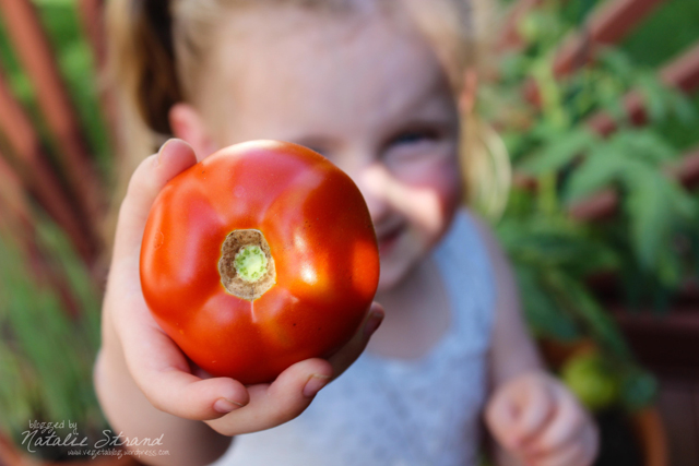 Vivian picked her first tomato!