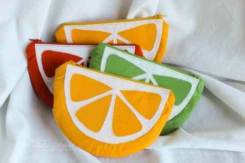 fruit slice pouches