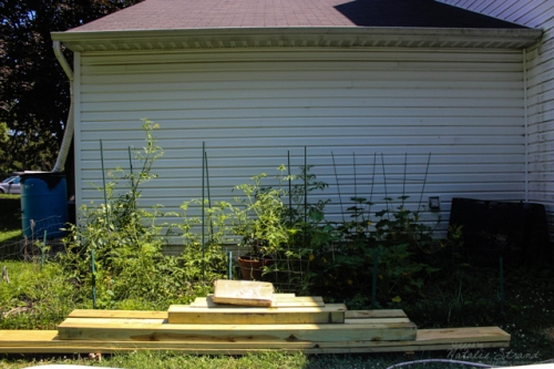 "After a couple weeks of ""neglect""-- I made the excuse of not working in it because of the deck remodel-- the garden was looking really overgrown."