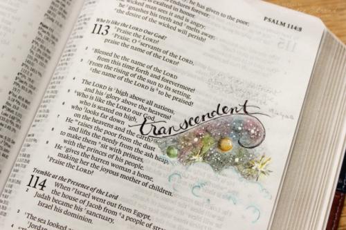 God is transcendent. based on Ps 113:4-5