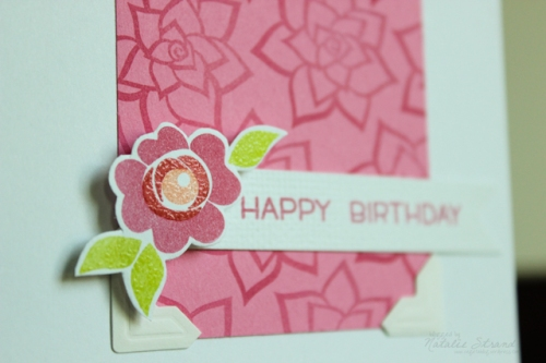 2016_08_19_flowerbirthday_close-Edit