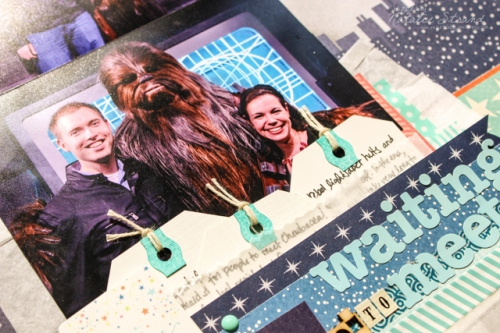2016_09_26_wookiee_close5-edit