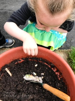 This morning, the kids and I put their bean seeds into soil in a pot outside. It will be fun to watch them grow-- if the squirrels don't get them first